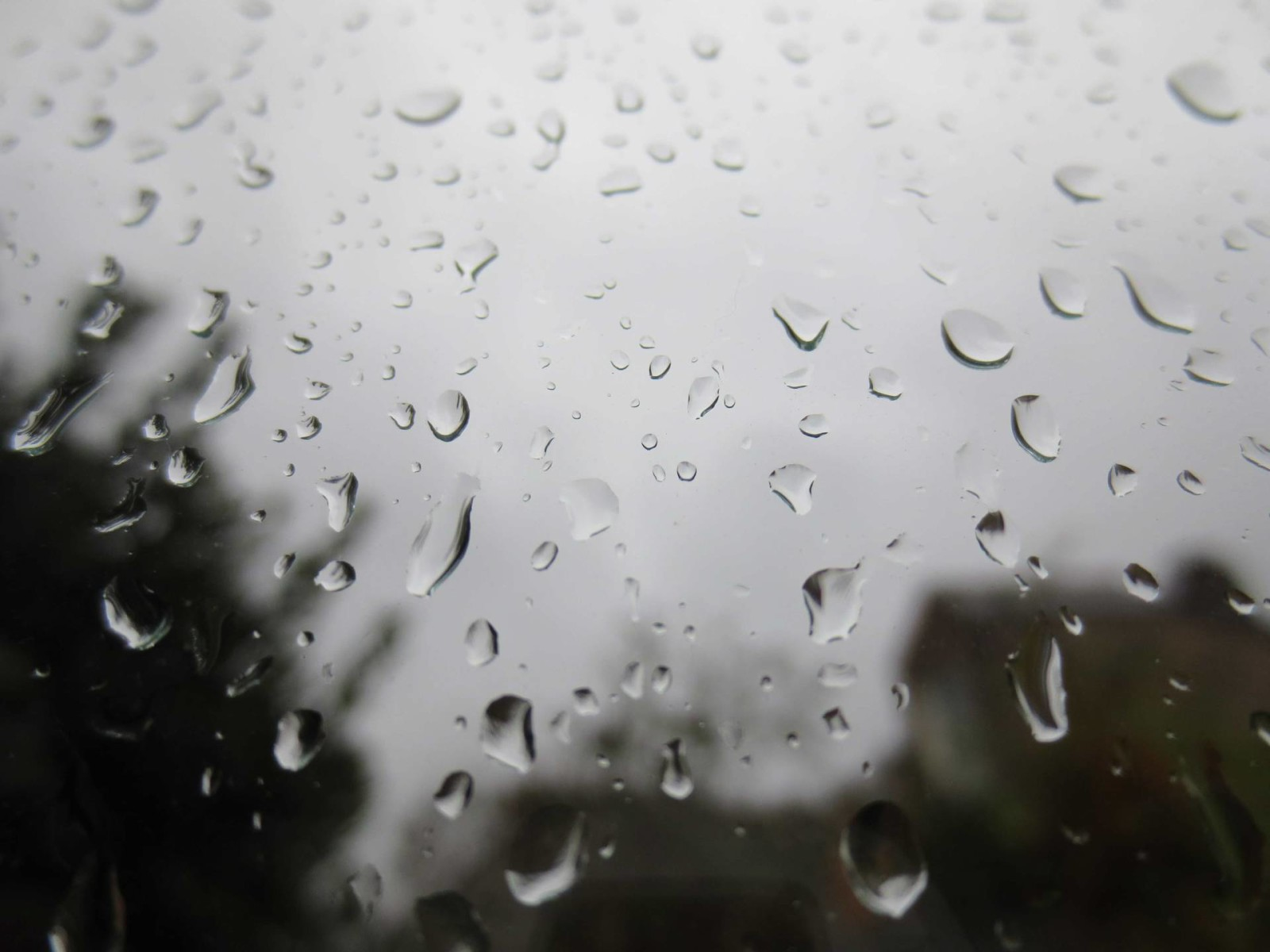 Rainy, lazy, hazy days