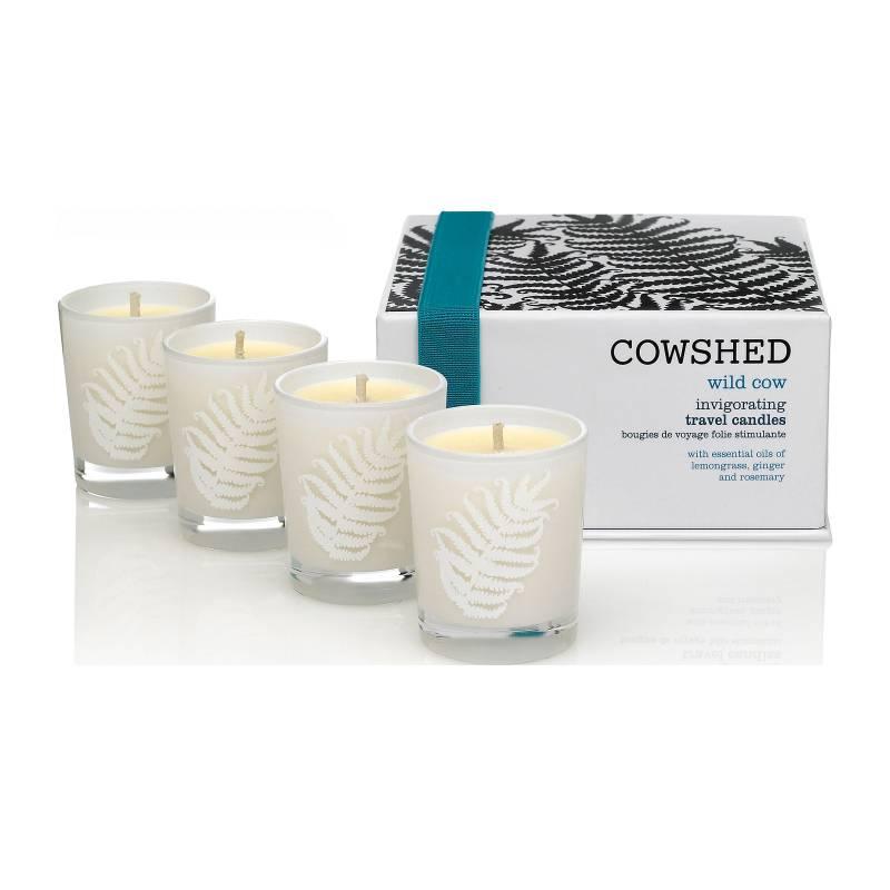 Wild cow invigorating travel candles